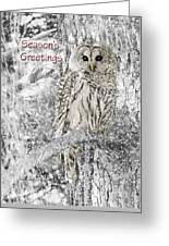 Season's Greetings Card Winter Barred Owl Greeting Card