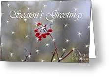 Seasons Greetings Red Berries Greeting Card