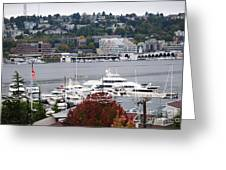 Seattle Marina Greeting Card