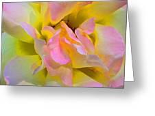 Seattle's Rose Greeting Card
