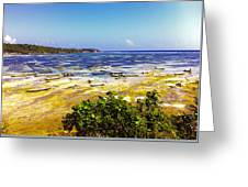 Seaweed Farming Bali Greeting Card by Jo Ann
