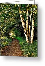 Sechelt Marsh Path Greeting Card