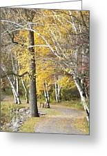 Secluded Lake Road Greeting Card