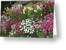 Secret Garden Greeting Card