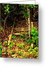 Secret Stairway Greeting Card