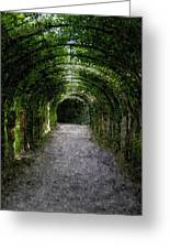 Secret Tunnel Greeting Card