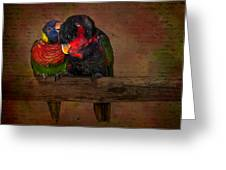 Secrets Greeting Card by Susan Candelario