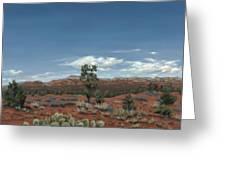 Sedona Cactus Az Greeting Card