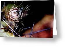 Sedona's Desert Rose Greeting Card