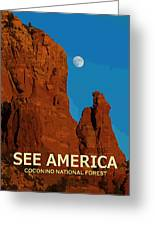 See America - Coconino National Forest Greeting Card