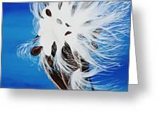 Milkweed Pod Greeting Card