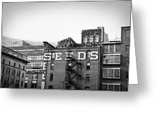 Seeds Building Two Greeting Card