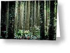 Seeing The Forest With The Trees Greeting Card