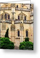 Segovia Cathedral Greeting Card