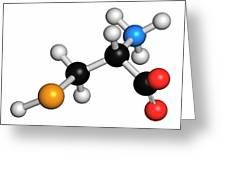 Selenocysteine Amino Acid Molecule Greeting Card