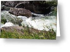 Selway Falls Greeting Card