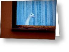 Sembach Window Greeting Card