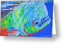semi abstract Mahi mahi Greeting Card