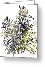Senecio And Other Plants Greeting Card