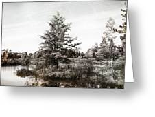 Seney Silver And Chocolate Greeting Card