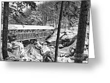 Sentinel Pine Covered Bridge - Franconia Notch State Park New Hampshire Usa Greeting Card by Erin Paul Donovan