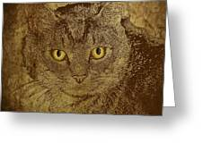 Sepia Cat Greeting Card