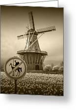 Sepia Colored No Tilting At Windmills Greeting Card