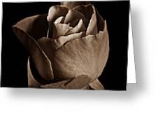 Sepia Rose Portrait 2 Greeting Card