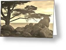 Sepia Seaview Greeting Card