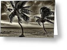 Sepia Sunset Greeting Card