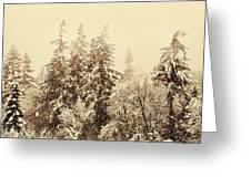 Sepia Winter Landscape Greeting Card