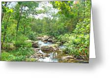 September Arrives At The Unami Creek Greeting Card