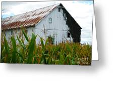September Corn Barn Greeting Card