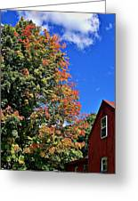 September Morn Greeting Card