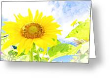 September Sun Greeting Card