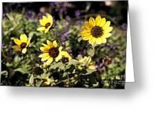September Yellow Greeting Card
