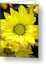 September Yellow Greeting Card