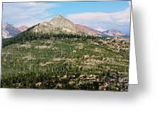Sequoi National Park Greeting Card