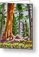 Sequoia Park - California Sketchbook Project  Greeting Card