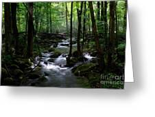 Serene Greenbrier Area Stream  Greeting Card