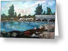 Serene River Greeting Card