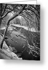 Serene Winter Stream Greeting Card