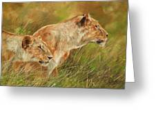 Serengeti Sisters Greeting Card