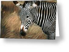 Serengeti Zebra Greeting Card