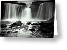 Serenity And Majesty Greeting Card