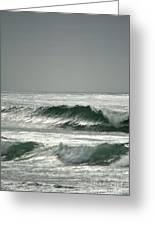 Serenity At Bodega Bay Greeting Card
