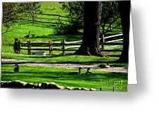 Serenity At Tashmoo Farm Greeting Card