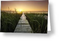 Serenity At The Lake Greeting Card