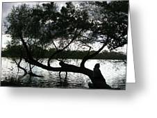 Serenity On The River Greeting Card