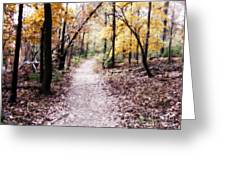 Serenity Walk In The Woods Greeting Card